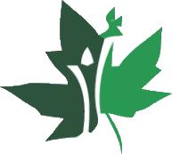 Ontario Debt Law